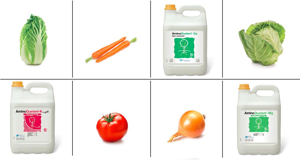 nawóz do warzyw