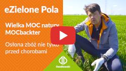eZielone Pola#6 | Osłona zbóż nie tylko przed chorobami; Wielka MOC natury MOCbackter