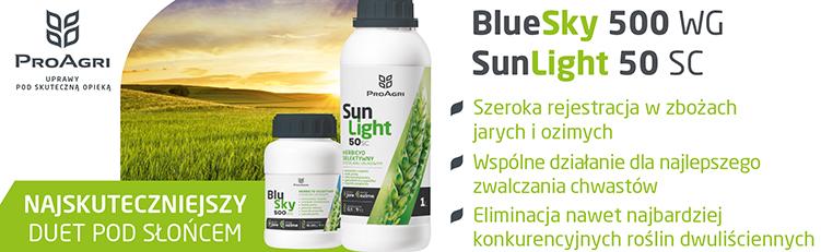 baner BlueSky SunLight 2021