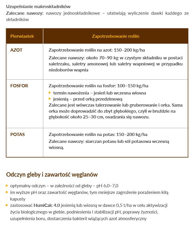 kapusta-schemat-05